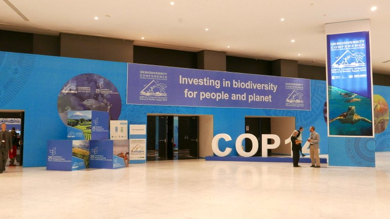 A look back at the CBD COP 14