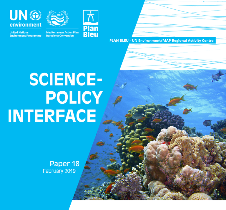 Science-Policy Interface (SPI) to support monitoring implementation plans as well as sub-regional and regional policy-developments.
