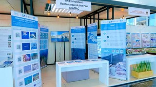 SPA/RAC & INFO/RAC Stand at COP14 CBD