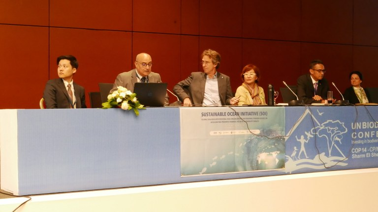 The SPA/RAC's Contributions to the COP 14 Convention for Biological Diversity