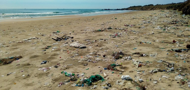 Priority areas of intervention to curb marine litter from food and beverage plastic packaging in Albania, Bosnia and Herzegovina and Montenegro.