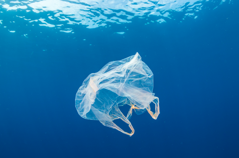 SCP/RAC supports  five Mediterranean countries in curbing single-use plastic waste