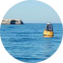 marinemonitor.png