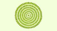 Communiqué de presse - Le Projet WES soutient l'économie circulaire et l'entrepreunariat vert en Algérie
