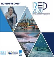 RED 2020 - Présentation du Rapport en France