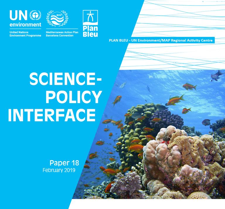 Interface Science-Politique (SPI) pour soutenir les plans de mise en œuvre du suivi ainsi que les développements politiques sous-régionaux et régionaux