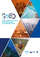 RED 2020 - Rapport sur l'état de l'environnement en Méditerranée