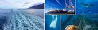 Un partenariat entre l'OMI et la FAO pour lutter contre les déchets marins